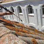 Demoussage de toiture Paray-Vieille-Poste